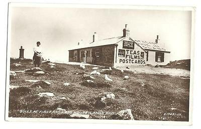 c1930 Gulls at First Aid and Last House Lands End Cornwall UK RPPC Postcard