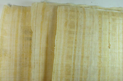 "10 BLANK PAPYRUS WHOLESALE LOT EGYPTIAN ORIGINAL HAND MADE 16""x12"" (30x40CM)"