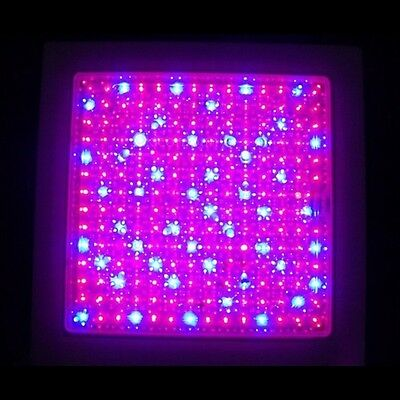 Great 196 LED Red+Blue Hydroponic Plant Grow Light Lamp Panel AC 220V 9W