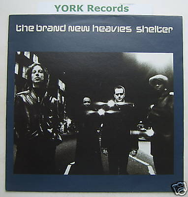 "BRAND NEW HEAVIES - Shelter - Excellent Con 12"" Single"