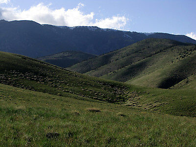 BEARTOOTH MOUNTAINS! 1/4 MILE FROM THE NATIONAL FOREST! 20 ACRES OF MONTANA LAND