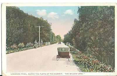 Lebanon Trail Along the Flats at The Summit Willow Lane Pittsfield MA Postcard