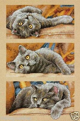 """Dimensions Gold Counted Cross Stitch kit 10"""" x 15"""" ~ MAX THE CAT #70-35301 Sale"""