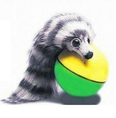 FD1784 Rolling Ball Pet Dog Cat Weasel Motorized Appears Jump Mouse Alive Toy