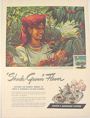 1946 Chase & Sanborn COFFEE ad Woman Picking Shade-Grown Coffee Beans