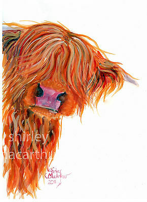HIGHLAND COW PRINTS of Original Watercolour Painting 'PEEKABOO'  by SHIRLEY M