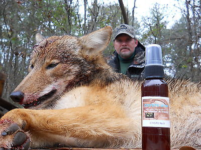Coyote Urine For Hunting and Trapping Lure