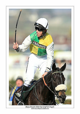Many Clouds 2015 Grand National Leighton Aspell Horse Racing A4 Photo Aintree 5