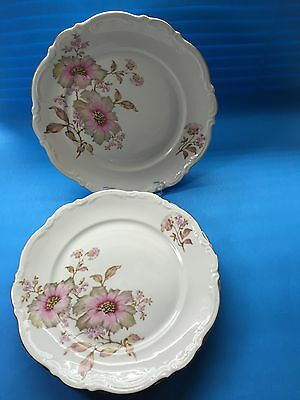 4 Mitterteich Bavaria Dinner Plates Dogwood Germany 4376  59