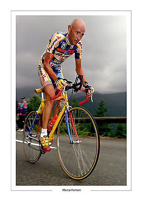 Marco Pantani Tour De France  A4 Photo Italy Cycling