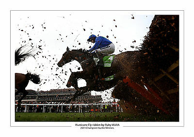Hurricane Fly Ruby Walsh Champion Hurdle 2011 Horse Racing A4  Photo Cheltenham
