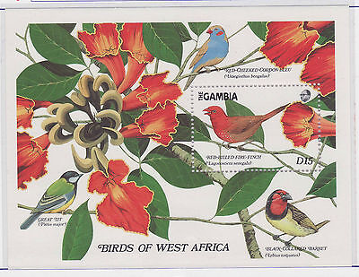 Gambia uccelli stamps