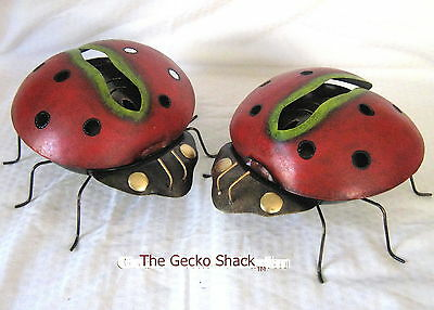Lady Bug ladybird Mosquito Coil Holder perfect patio deck,BBQ area Home & Garden