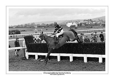L'escargot Horse Racing A4 Photo Print Tommy Carberry Cheltenham Gold Cup 1971