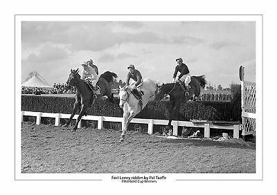 Fort Leney Horse Racing A4 Photo Pat Taaffe Cheltenham Gold Cup 1968