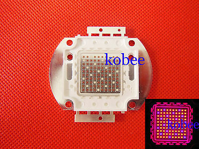 100W Plant Grow Hydroponic Red 660nm & Blue 445nm 4:1 SMD LED Grow Plant light