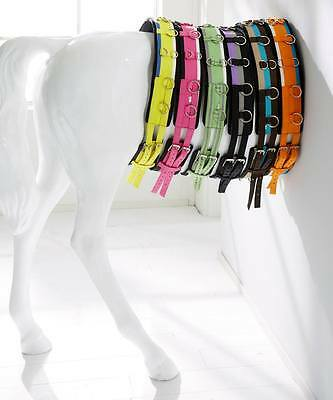 Luxury Neoprene Lungeing Roller + Matching Lunge Line - Cob - superb quality !!