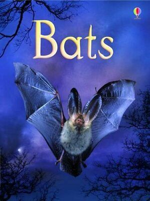 Bats (Usborne Beginners) (Beginners Series) by Megan Cullis Hardback Book The