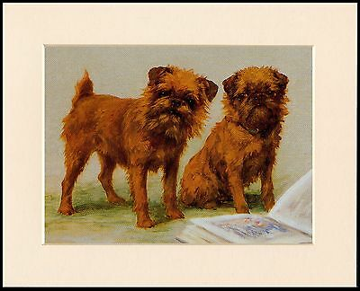 Brussels Griffon Lovely Little Dog Print Two Dogs & Book Ready Mounted