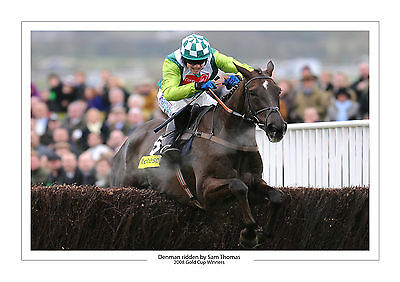 Denman Sam Thomas 2008 Gold Cup Horse Racing  A4 Print Photo Cheltenham
