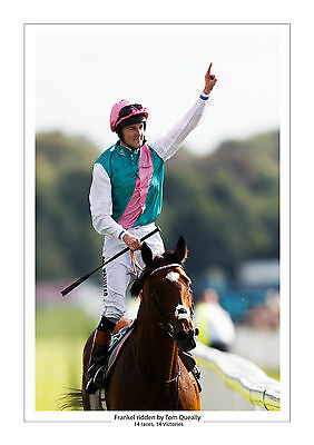 Frankel Career Stats Horse Racing  A4 Print Photo Tom Queally 14 From 14  4