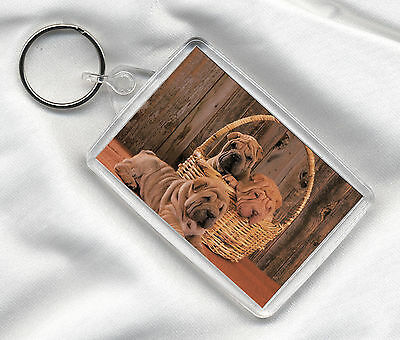 Key Ring Lovely Dog Print Image Insert Shar Pei Pups In A Basket Great Gift