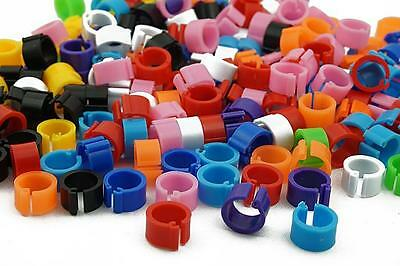Bird Rings Colorful Leg Bands for Pigeon Parrot Finch Canary Hatch Poultry Rings