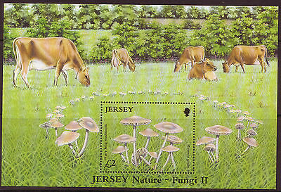 Jersey 2005 Fungus Unmounted Mint, Mnh