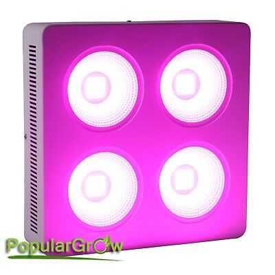 Reflector COB 800W Led Grow Light For hydroponics commercially grow used light
