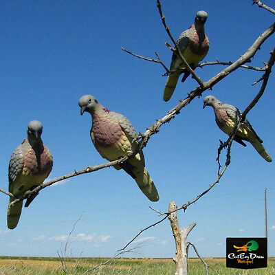 New Edge Expedite Lucky Duck Clip-On Mourning Dove Decoys Pigeon Metal Clip On 4