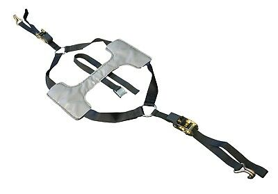 Motorcycle Tyre Fix Tie Down Straps For Van / Trailer Transport Restraint System