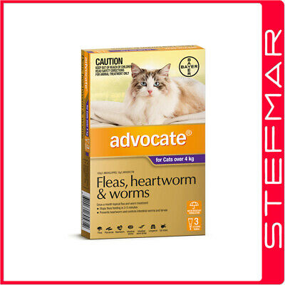 Bayer Advocate Cat Over 4Kg Large Purple 3Pack