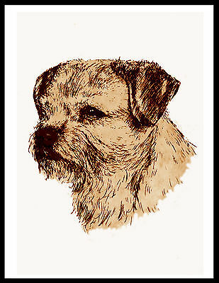 Border Terrier Head Study Lovely Vintage Style Dog Print Poster