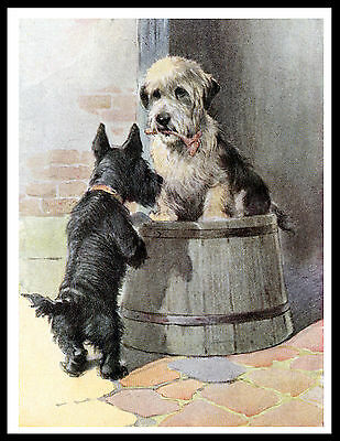 Dandie Dinmont And Scottish Terrier Lovely Vintage Style Dog Print Poster