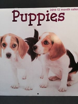 "Puppies 2016 12-Month Deluxe Wall Calendar. Full Color 12"" X 12""."
