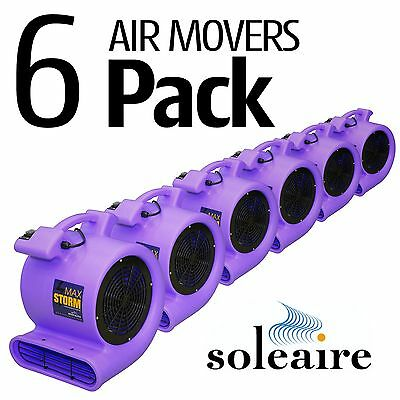Air Mover Blower 115V Soleaire® Max Storm 2550 CFM 6 Pack Purple