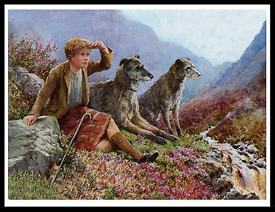 Scottish Deerhound Boy And Dogs Lovely Vintage Style Dog Print Poster