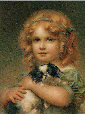 Japanese Chin Charming Dog Greetings Note Card Little Girl Holds Beautiful Dog