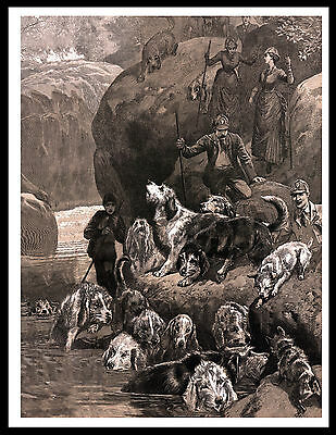 Otterhound Dogs People Hunting Great Image Vintage Style Dog Print Poster
