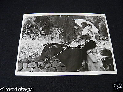 Unusual Weird Postcard Sicily 1963 Man on horse with child & Brolly