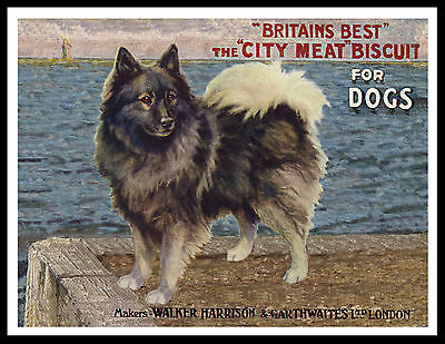 Keeshond Dog Food Advert Lovely Vintage Style Dog Print Poster