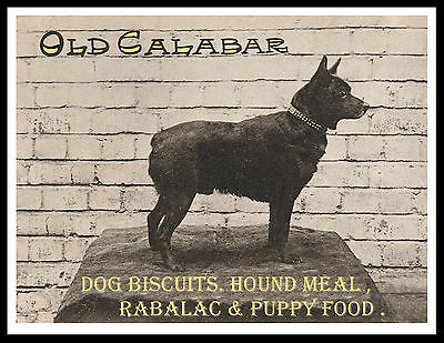 Schipperke On Great Vintage Style Dog Food Advert Print Poster