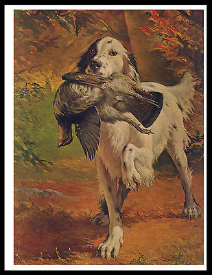 English Setter Dog Carrying Bird Lovely Vintage Style Dog Print Poster