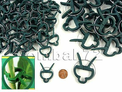 SMALL or LARGE Plastic Garden Plant to Cane Support CLIPS Sprung Spring Ties