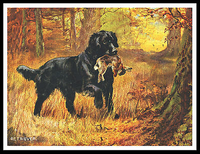 Flat Coated Retriever Dog And Rabbit Great Vintage Style Dog Print Poster
