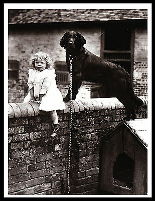 Flat Coated Retriever Little Girl And Dog Charming Vintage Style Print Poster