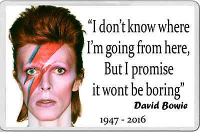 FRIDGE MAGNET in memory of David Bowie 1947-2016 quote & picture
