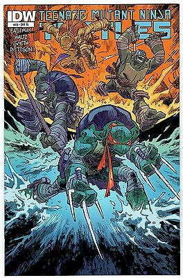 Tmnt Ongoing #49 1:10 Incentive Variant Cover