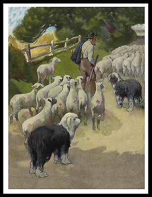 Old English Sheepdog Dogs And Sheep Great Vintage Style Dog Print Poster