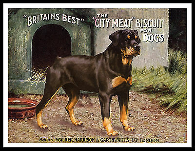 Rottweiler Great Vintage Style Dog Food Advert Art Print Poster